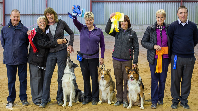 East Grinstead District Dog Club Annual Championship Obedience Show