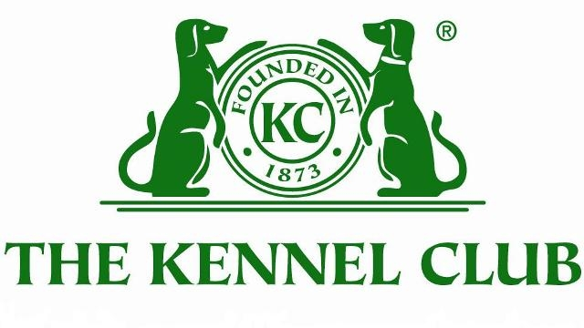 East Grinstead Dog Training Club are Affiliated to the Kennel Club